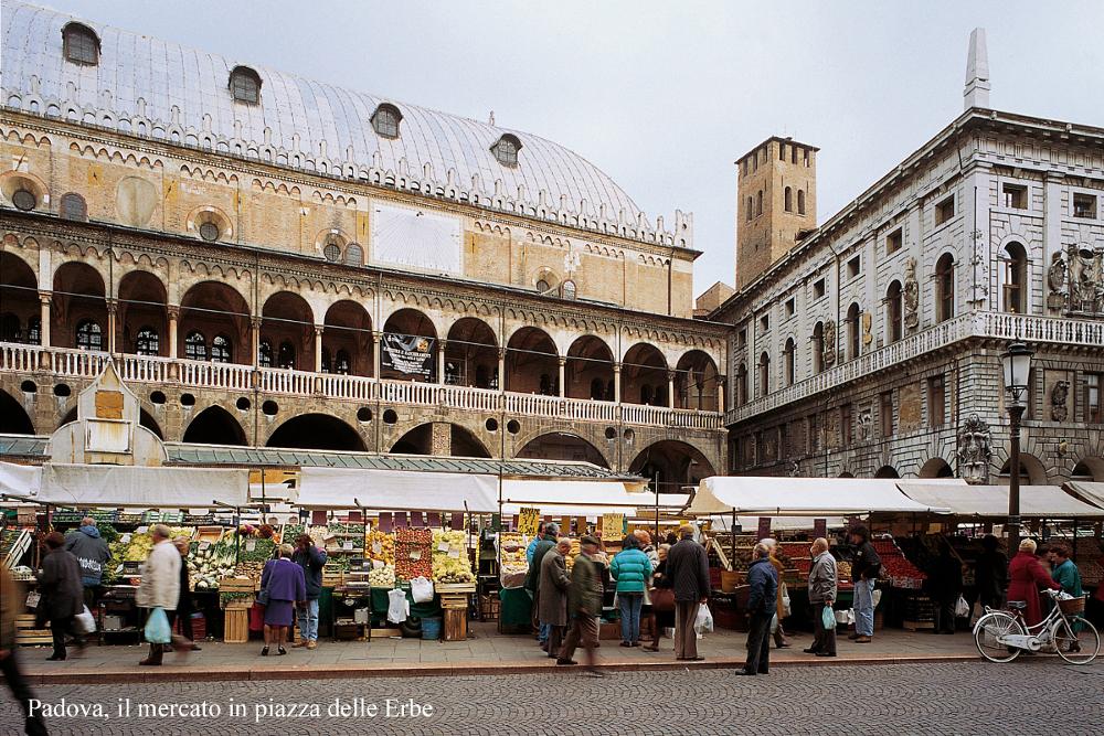 A day in padova padova cultura for Mercato antiquariato padova
