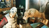 INANIMUS. Un bestiario contemporaneo. Mostra Tassidermia Artistica-Alberto Michelon