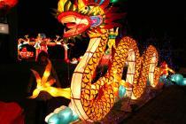 Capodanno Cinese e Festa delle Lanterne 2017-Capodanno Cinese