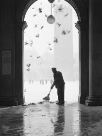 Gustavo Millozzi. Photographs 1958-1979-colombi e neve