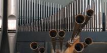 I Concerti del Centro Organistico Padovano-55 ciclo-Particolare dell'organo