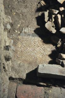 frammenti di mosaico