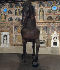 il cavallo visto di fronte