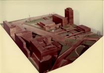 Plastico Policlinico 1950