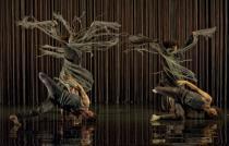 """Prospettiva Danza Teatro 2014-Compagnia Käfig """"Yo Gee Ti"""""""
