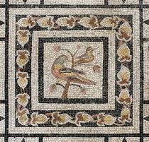 NOTTURNI D'ARTE 2017. Gli appuntamenti della settimana dall'8 al 12 agosto-Mosaico Museo Archeologico di Padova