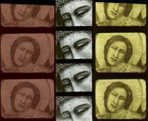 Giotto in Arena. La storia dell'Arena Romana