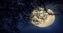 Le Lune di Padova. Eventi speciali 2021 del Planetario di Padova