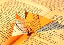 Leggi_amo i libri a voce alta. NATALEbiblioteche 2017